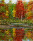 Bream-Pond-Autumn-30x24-small.jpg